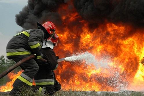 Δασικές Πυρκαγιές (2015)