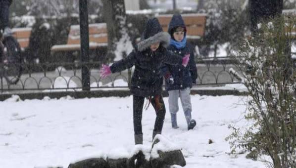 Απόφαση Δημάρχου για το κλείσιμο των σχολείων στο Δήμο Ρήγα Φεραίου στις 30-11-2016