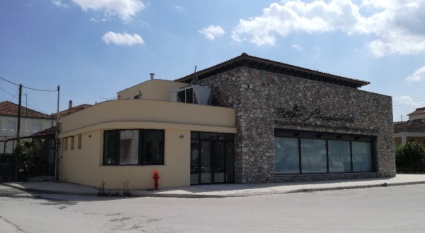 Επίσκεψη μαθητών νηπιαγωγείου και δημοτικού στο Δήμο Ρήγα Φεραίου για τη «Χάρτα του Ρήγα»